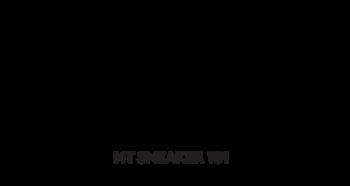 MTSNEAKER101